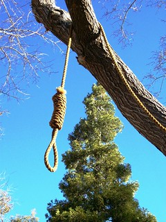 Get a rope!  Hangman's noose hanging from the ...