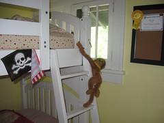 monkey bunk