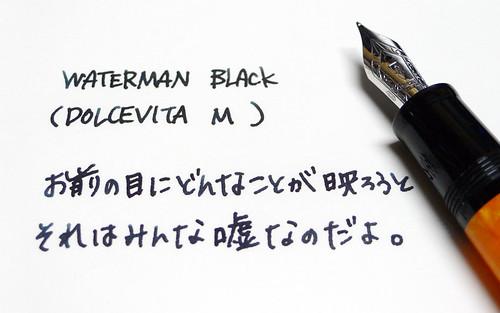 WATERMAN Black