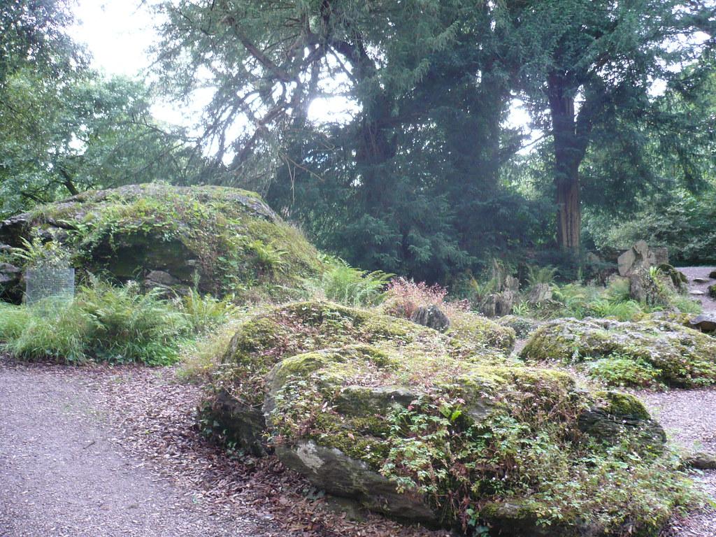 la roca de los druidas