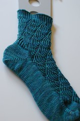 Finished Pomatomus Sock #1