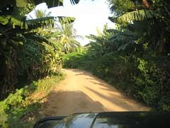 Way to Nava Brindhavan