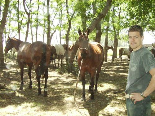 met de paarden aan het Chillen!!!