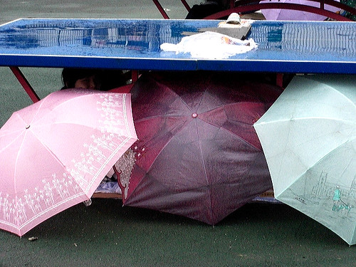 Pingpong umbrella shelter