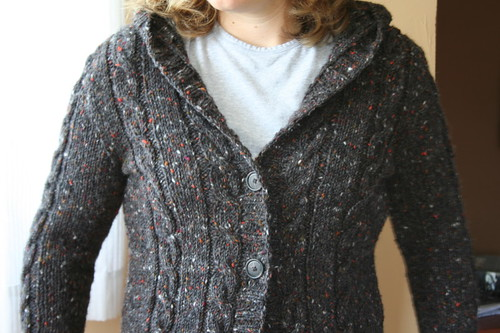 Central Park Hoodie in Tahki Donegal Tweed