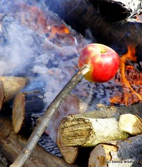 Roasting apples over an open fire