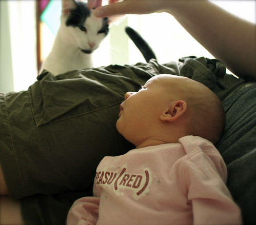 discovering her kitty.