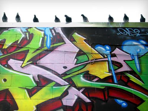 Birds & graffiti