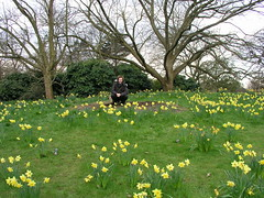 Paul and Daffodils at Kew Gardens