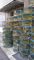 67.滿滿的捕蟹籠