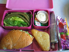 laptop_lunchbox 2008.02.20
