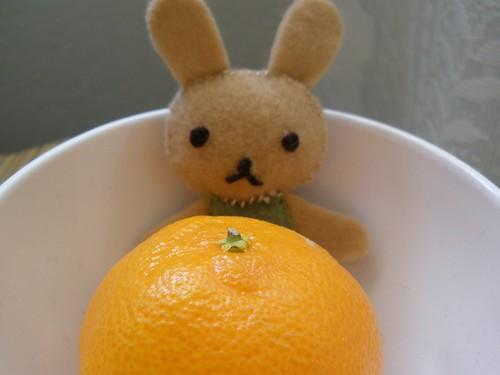 Tan Bunny