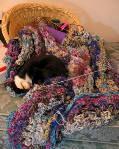 helping with the crochet blanket