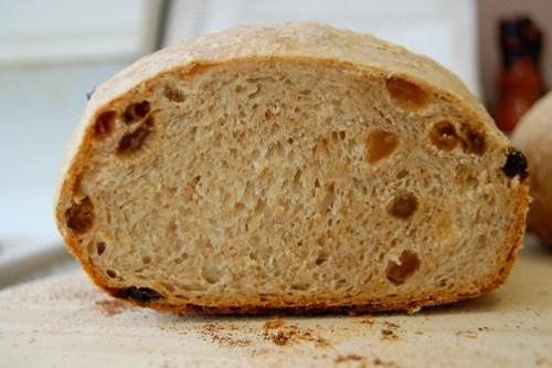 golden raisin bread crumb
