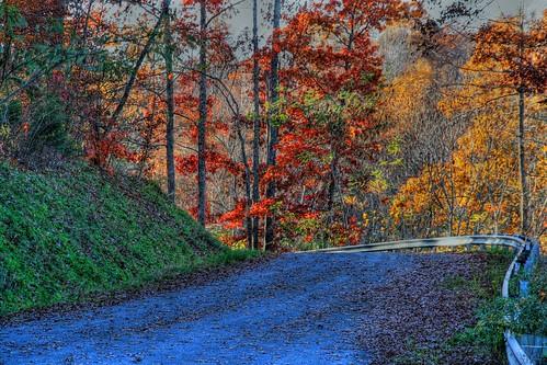 As Autumn Bends Towards Winter