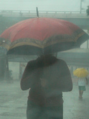 typhoon frank_red and yellow umbrellas
