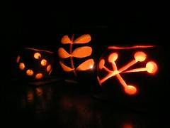 Patterns on pumpkins