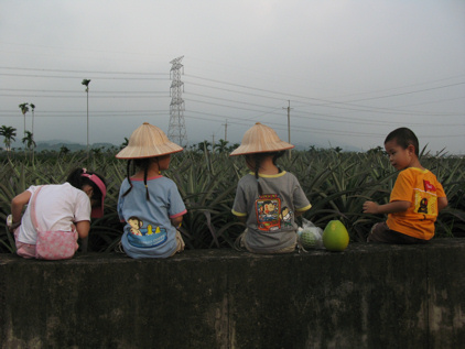 2008夏遊古坑(中):右右記者古坑水果報導(4 ys)