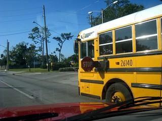 school bus stop (11-06-08)
