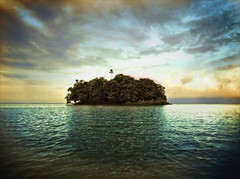 What 5 books would I take with me to a desert island?