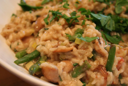 Risotto closeup