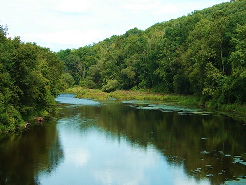 lackawaxen river-summer-08
