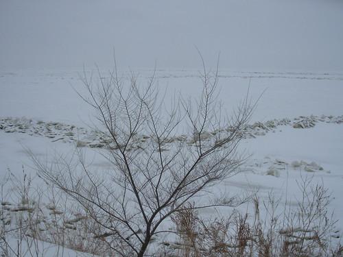 winter lake dec 08 017