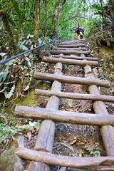 Die steilen Holzleitern rauf zur Bergspitze des Putukusi