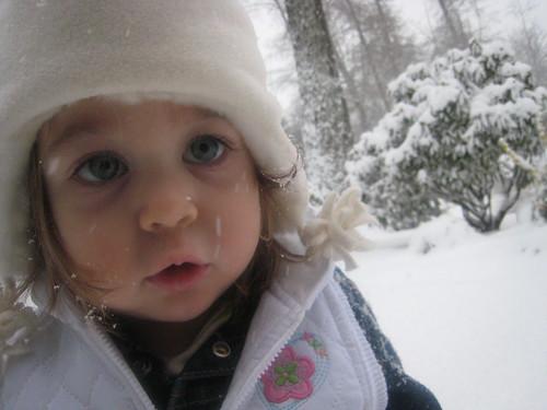 Snowstorm II 2008