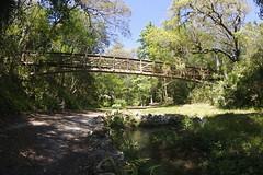 Ravine Gardens Suspension Bridge