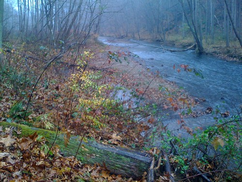 Low water along the Gunpowder River, MD