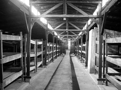 Auschwitz-Birkenau II (Oświęcim-Brzezinka)
