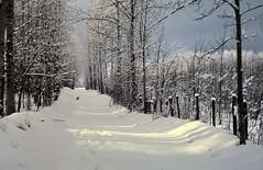 gm_13005 Shining Bank Snow, Alberta 1977