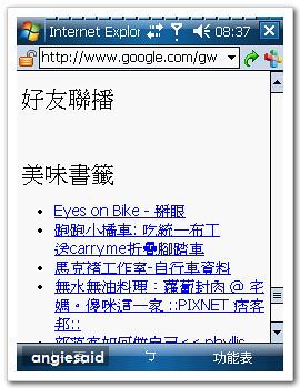 google-angie-04.jpg