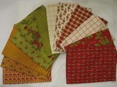 Set of 12 cloth napkins (set A)