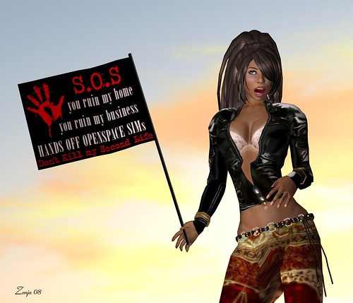 0369 - Second Life needs YOU!