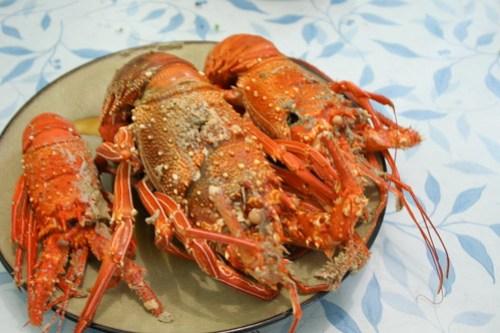 Lobsters in Batanes