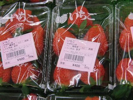 庄内おばこの里~こまぎ~イチゴ