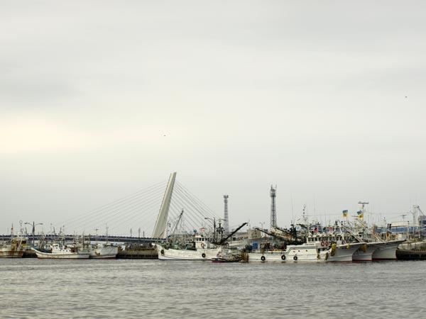 漁港ストアからの風景2