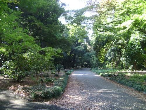 Shindjuku Gouen