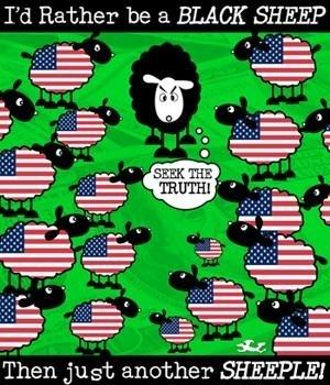 sheeple4