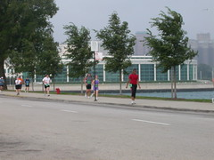 chitri2006run