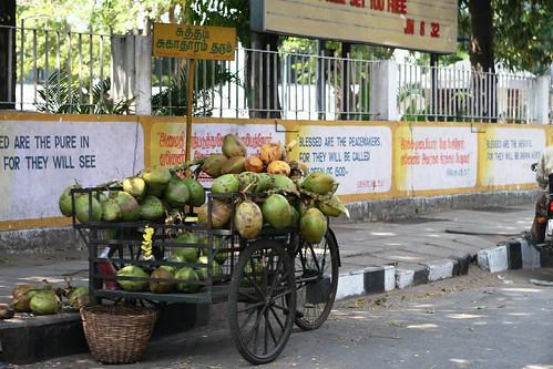 india.mahabalipuram.feb.08 342