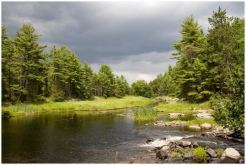 Algonquin Provincial Park 2008