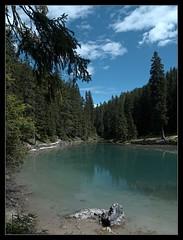 Lago Braies scorcio