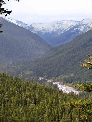 Mount Rainier National Park (3)