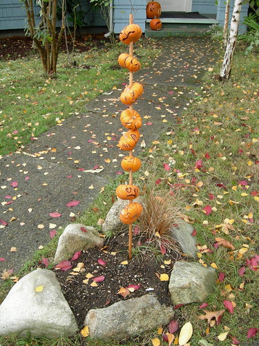 Mini pumpkin skewer