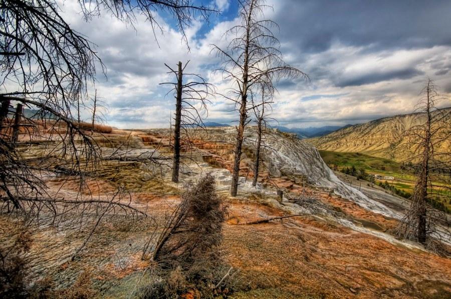 The Sulfur Runoff at Mammoth