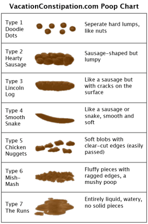 The Poop Chart – Vacation Constipation