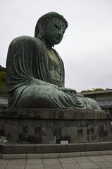 Daibutsu in Profile